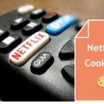 30+ Netflix Cookies 2018 (100%Trust premium Cookies Today Add)