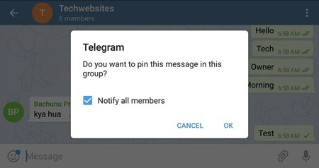 TELEGRAM PIN MESSAGE