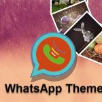 Download Whatsapp Themes For Android Device