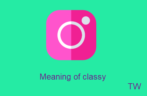 Meaning of classy