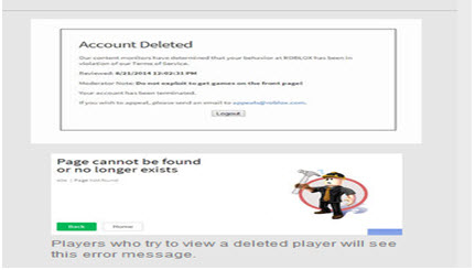 Account Deletion roblex ban